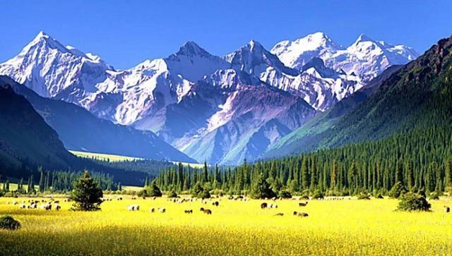 新疆旅游,你需要知道的10个问题